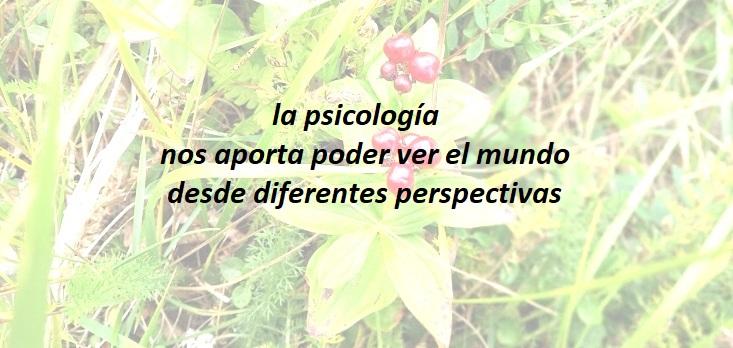 foto con frase de Psicología