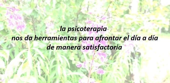 foto con fondo difuminado de hojitas verdes i flores de ramilletes de florecitas blancas. Superpuesta en primer plano frase de Psiología que dice la psicoterapia nos da herramientas para afrontar el día a día de manera satisfactoria
